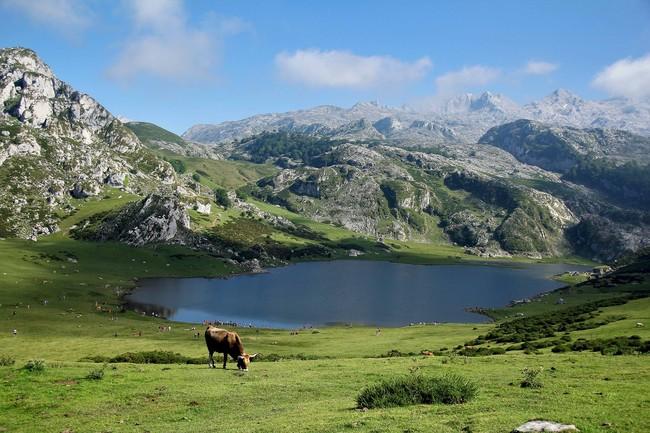 El Parque Nacional Picos De Europa Cumple 100 Anos