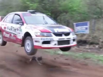 ¡Hay perros con mucha suerte! Mira en este vídeo cómo se salvó Pupi en el Rally de Codasur