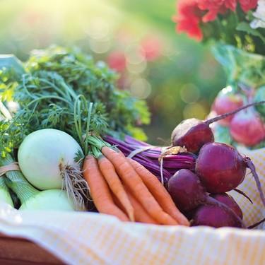 Tips para conservar más tiempo tus frutas y verduras en el refrigerador