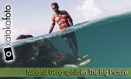 National Geographic en The Big Picture: 25 imágenes impactantes para inspirarte