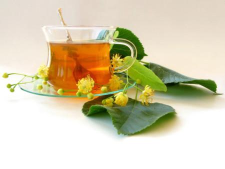 Como se prepara el te de hinojo para adelgazar