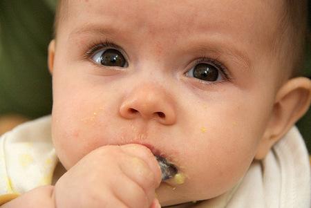 Los potitos comerciales y los purés caseros tienen el mismo perfil nutricional, según un estudio
