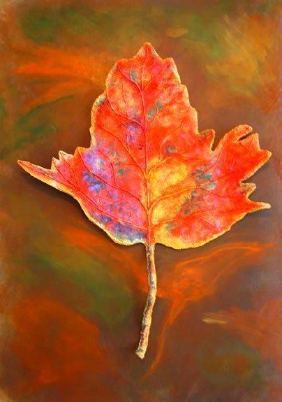 Las hojas del otoño nos ofrecen muchas posibilidades