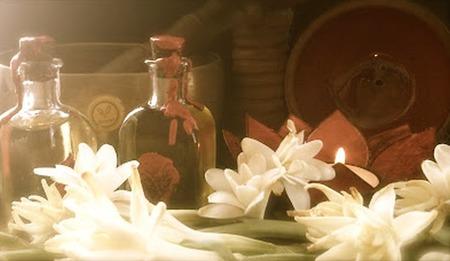 ellodge-bioyoga-flores.jpg