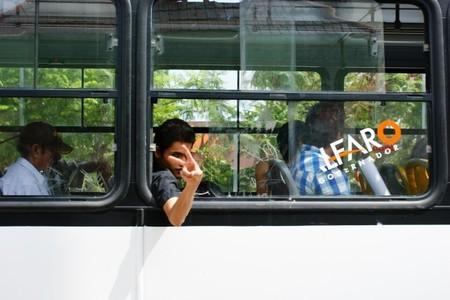 Autobus victoria