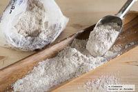 La espelta, un cereal antiguo con grandes propiedades