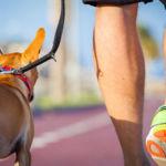 ¿Son 10.000 pasos diarios suficientes para estar en forma?