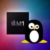 El 'hacker' que logró ejecutar Linux en la PS4 se ha propuesto repetir su hazaña con los procesadores Apple Silicon