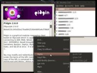 Pidgin 2.6 por fin implementa llamadas de voz y vídeo
