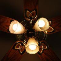 ¿Cuánta madera necesitarías para iluminar tu casa?