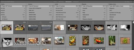 barra de filtros Lightroom 4