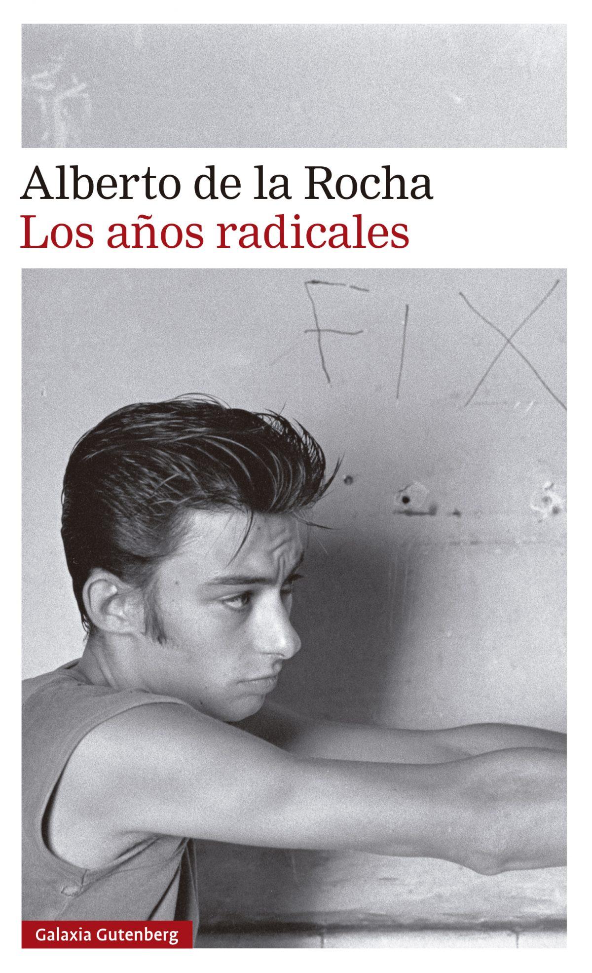 LOS AÑOS RADICALES (XIV PREMIO MÁLAGA DE NOVELA)