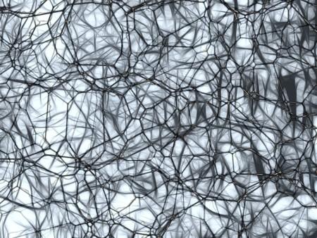 Neurons 877577 960 720