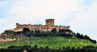 Castillo de Peñafiel: historia y vino