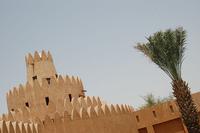 Al Ain, la ciudad de los siete oasis (Emiratos Árabes)