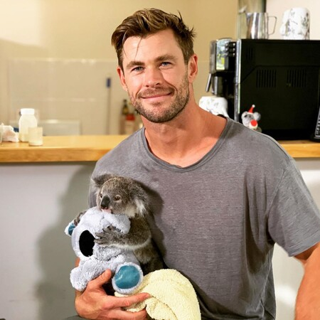 Chris-Koala
