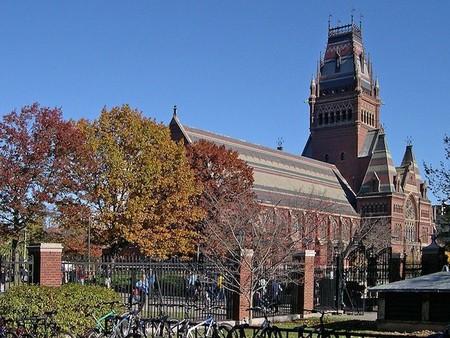 ¿Sigue siendo rentable económicamente ir a la universidad?