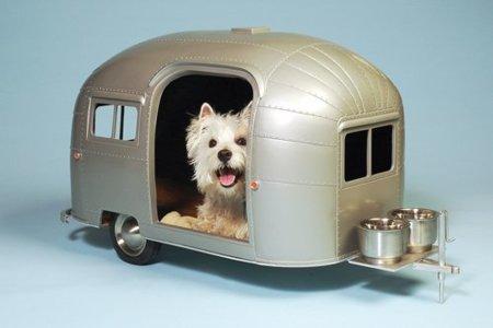 La caravana ideal para tu súper perrito