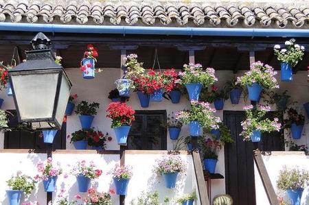 Los patios de Córdoba, Patrimonio Inmaterial de la Humanidad
