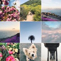 Instagram crea 'Archive', el lugar perfecto para enviar esas fotos que no nos gustan... pero no queremos borrar