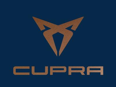 Al final sí habrá un SEAT Ibiza Cupra y es justo lo que ves en las fotos