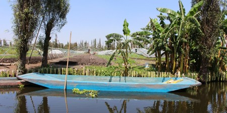 Urban Farming Rescued Chinampas Xochimilco 1280x640