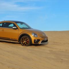 Foto 20 de 25 de la galería volkswagen-beetle-dune en Usedpickuptrucksforsale
