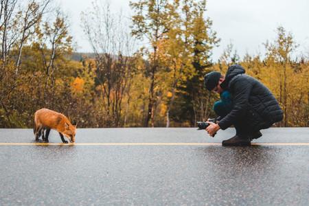 Instagram ha aumentado las selfies con animales salvajes un 292%. Malas noticias para los animales