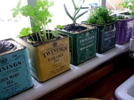 """Cocinas y plantas: aquí tienes un poco de inspiración para """"verdecorar"""""""