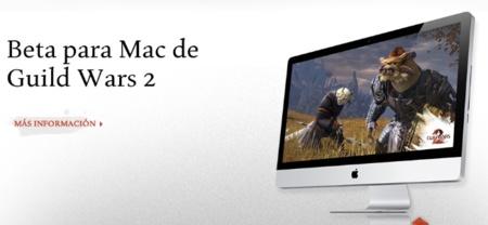 ArenaNet lanza una versión beta de Guild Wars 2 para OS X