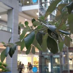 Foto 2 de 34 de la galería htc-u12-galeria-fotografica en Xataka