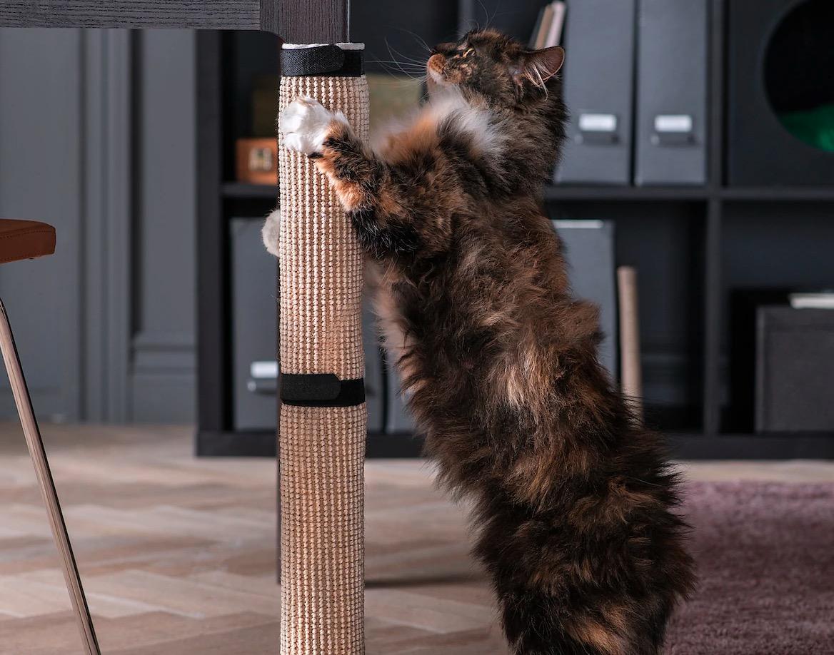 Rascador gato / arañador, natural, 25x63 cm