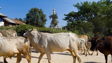 Hsipaw, un rincón por explorar de Myanmar