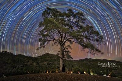 Viviendo en las estrellas, Daniel López