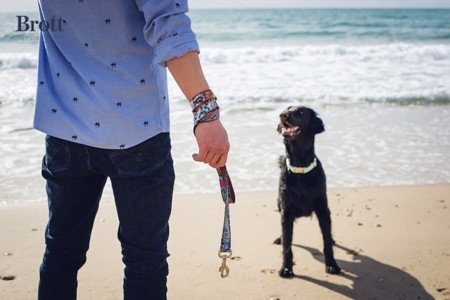 brott dog playa