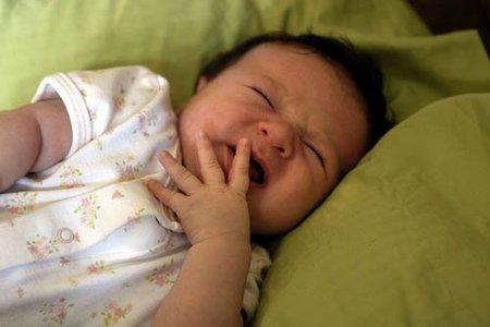 bebe-alta-demanda-caracteristicas-23.jpg