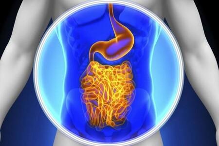 Perder peso, envejecer mejor y otras muchas razones por las cuáles es recomendable cuidar tu flora intestinal