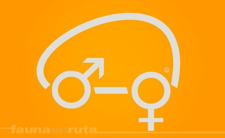 fauna en ruta: Guerra de sexos y conducción