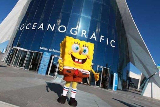Bob esponja en el oceanogr fic de valencia for Hotel oceanografic ninos