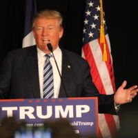 Tim Cook se reunió con otros ejecutivos TI para buscar la forma de detener a Donald Trump