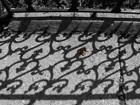 Iron Shadow