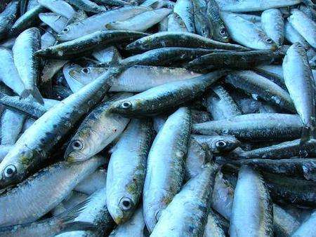Comida para sufrir menos: a más pescado, menos depresión