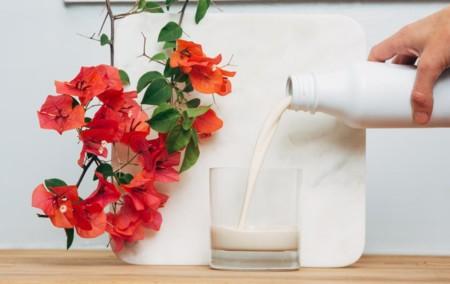Soylent 2.0 dice adiós a los polvos solubles y llega en botella