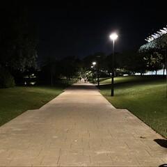 Foto 17 de 31 de la galería iphone-12-pro-max-fotos-en-baja-luminosidad en Applesfera