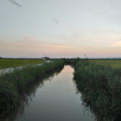 Foto 23 de 38 de la galería fotos-hechas-con-el-huawei-nova-plus en Xataka