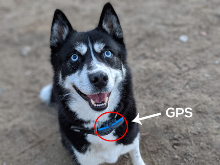 GPS Thor