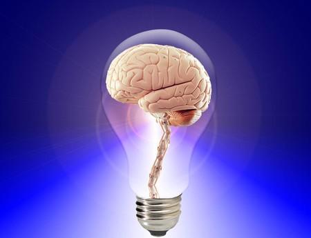 La Neurociencia Entra En Su Siguiente Nivel Llega El Neurocapitalismo 3