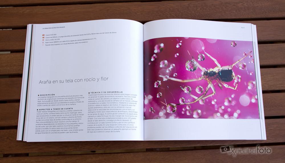 Fotoruta Serie50 Macrofotografia 02