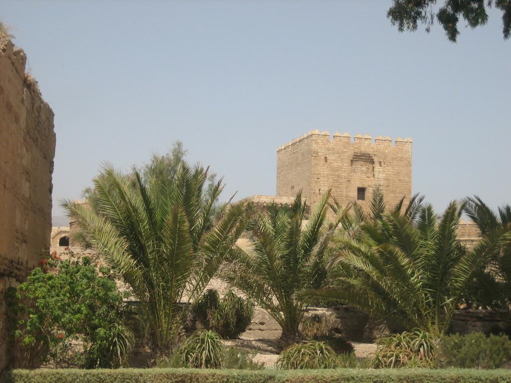 Foto de Alcazaba de Almería (14/16)