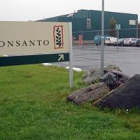 ¿Adiós a Monsanto? Las claves tecnológicas de la desaparición de la empresa más odiada del mundo
